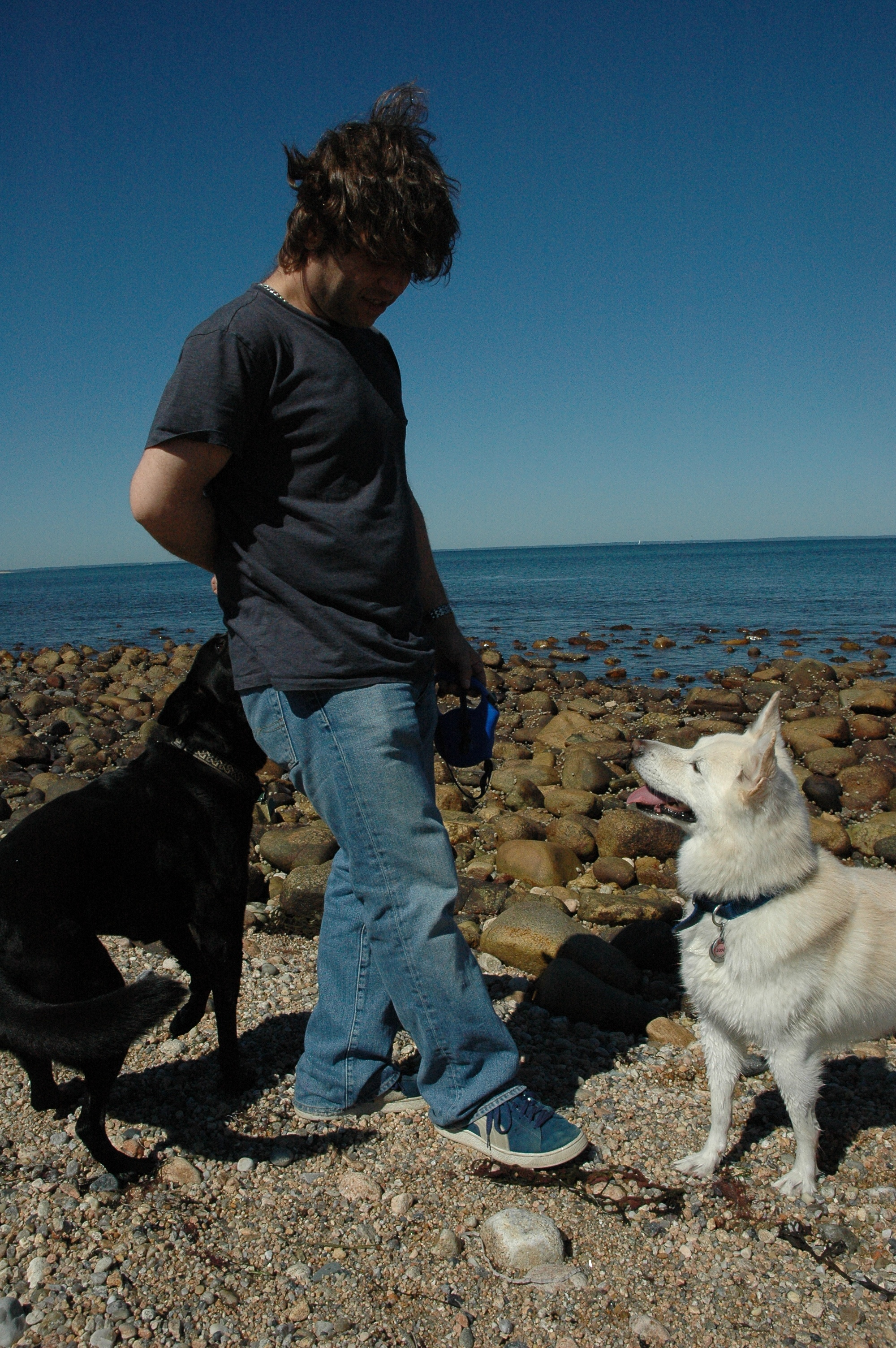 with Lennon and Wolfie